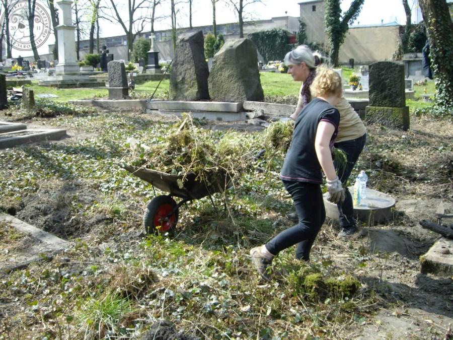 Cmentarz ewangelicki_0017