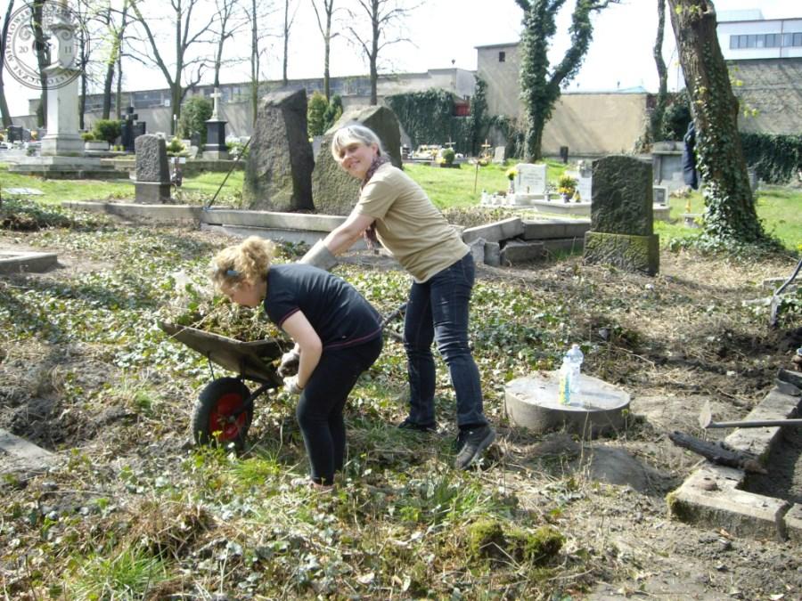 Cmentarz ewangelicki_0018