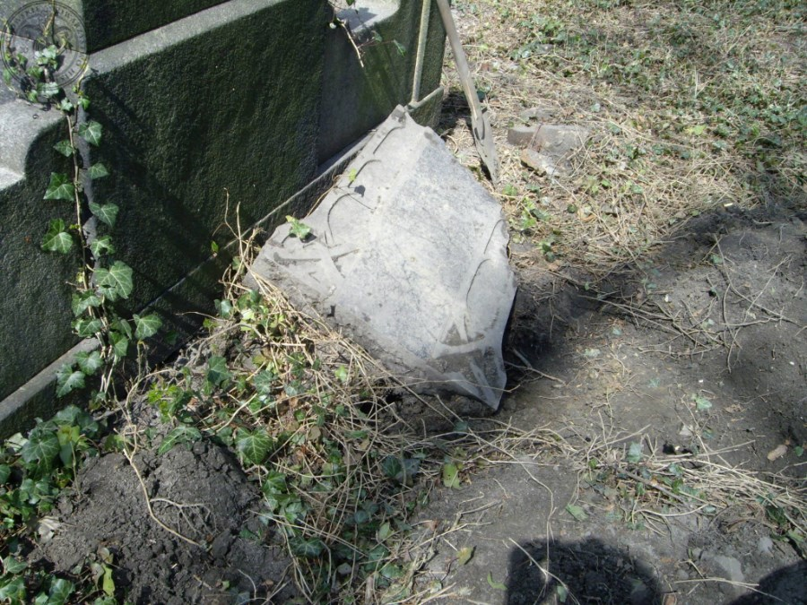 Cmentarz ewangelicki_0020
