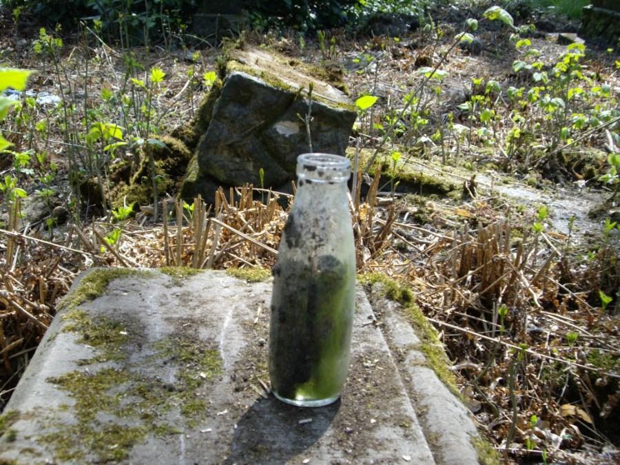 Cmentarz ewangelicki_0030