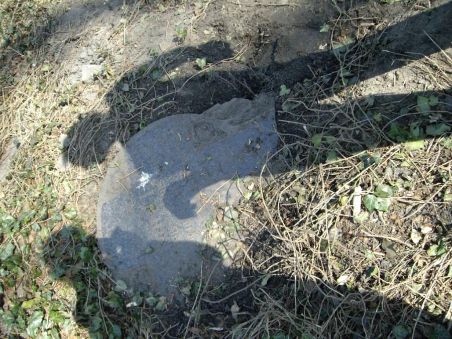 Cmentarz ewangelicki_0039